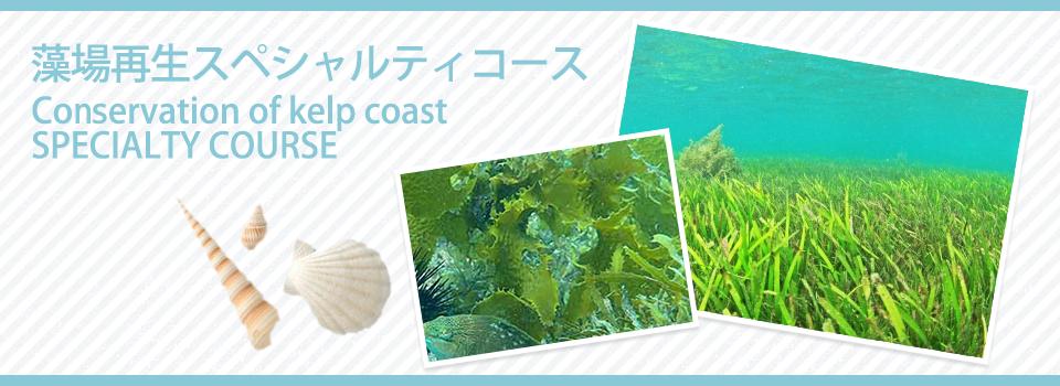 藻場再生スペシャルティコース